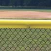 Original Baseball Fence Guard Premium Sample (Yellow Sample Shown)